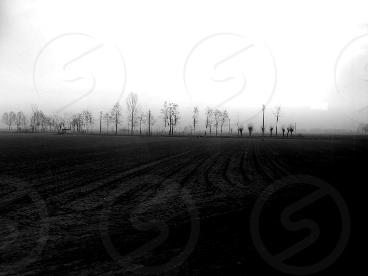 Nature field pathway trees blackandwhite black Grey sky country grass  photo