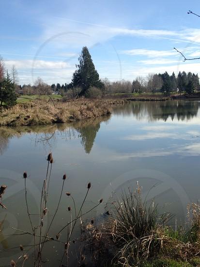 Summer Lake Park. Portland OR photo