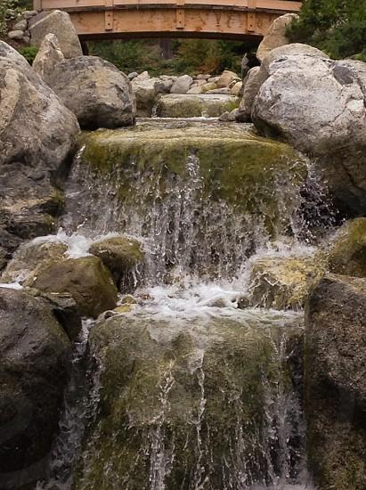 Waterfallrocksgardenspring photo