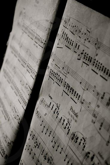 Piano Sheet Music Musical Notes Paper Macro. photo