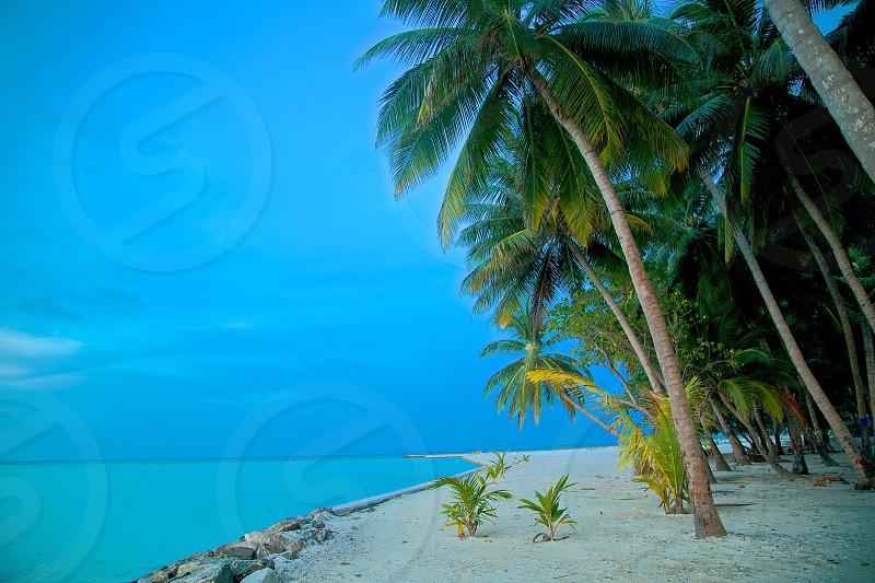 Blue skies over blue water. Matheveri Maldives photo