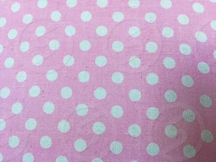 Pink polka dots spring colors photo