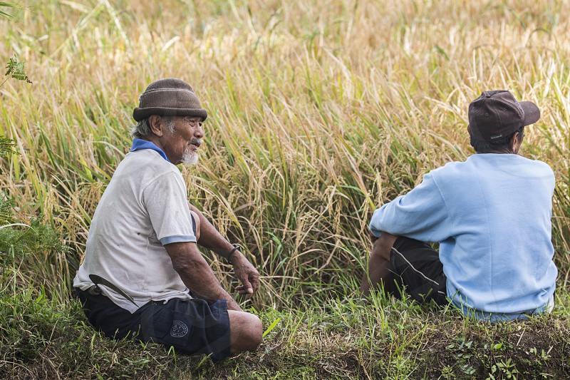 Two men rest in the rice field of Bali Indonesia photo