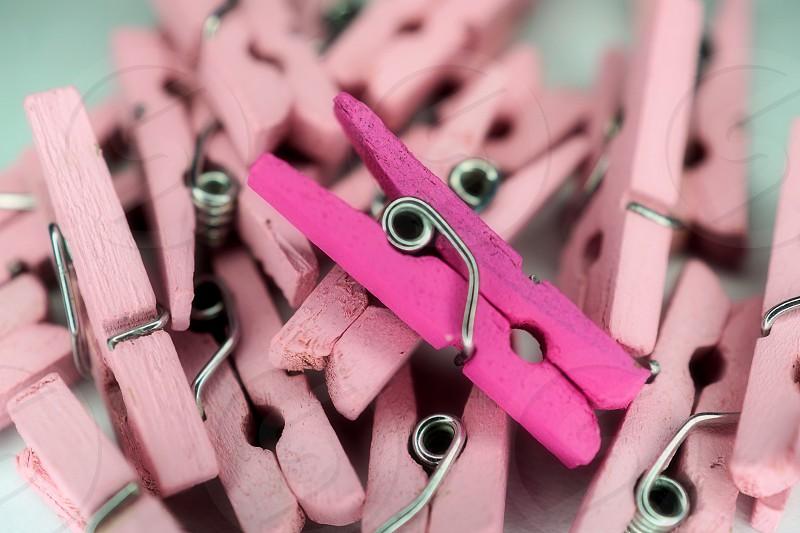 Pink clothes pins  photo