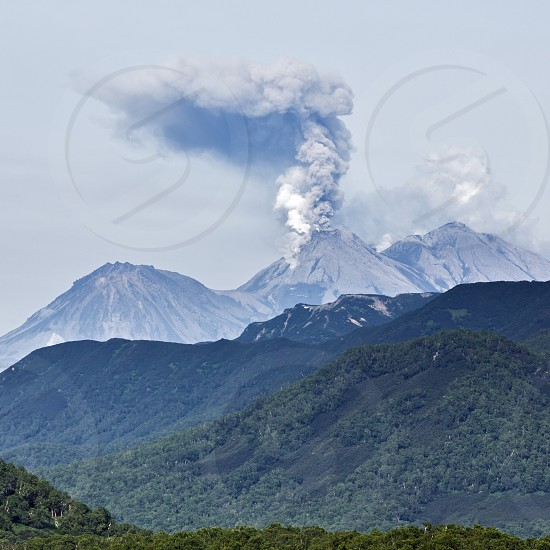 Scenery summer mountain landscape of Kamchatka Peninsula: view of explosive-effusive eruption of Zhupanovsky Volcano powerful plume of gas steam ash from crater active volcano and mountains with green forest on slopes. Eurasia Russian Far East Kamchatka Region. photo