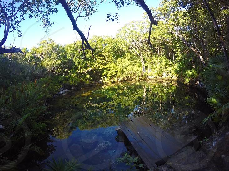 Cenote Mexico photo