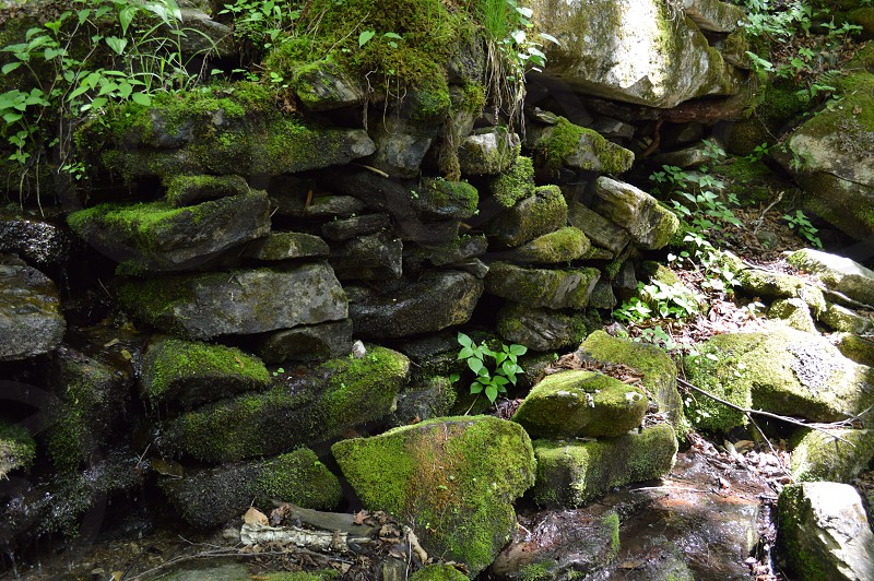 view of stacked mossy stones photo