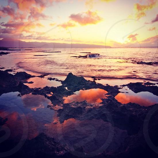 icy shoreline at sunset photo