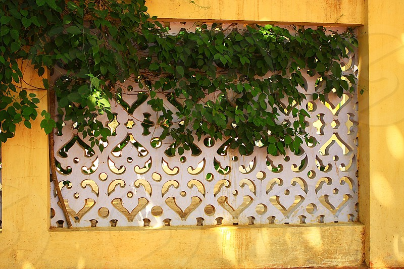 The fence in the ashram of Ramana Maharshi Tiruvannamalai India photo