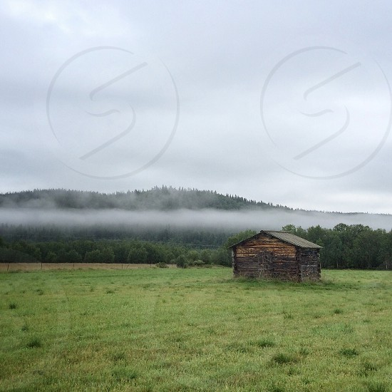 gray and brown wooden barn photo