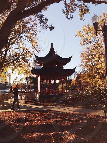 pagoda shed  photo