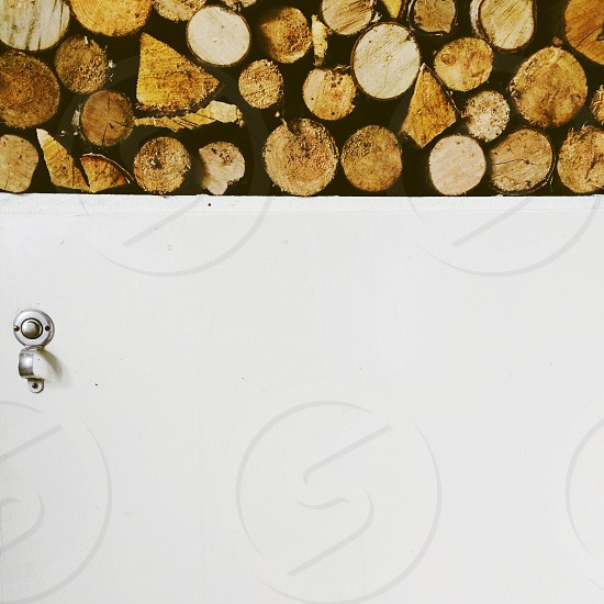 Fire wood photo