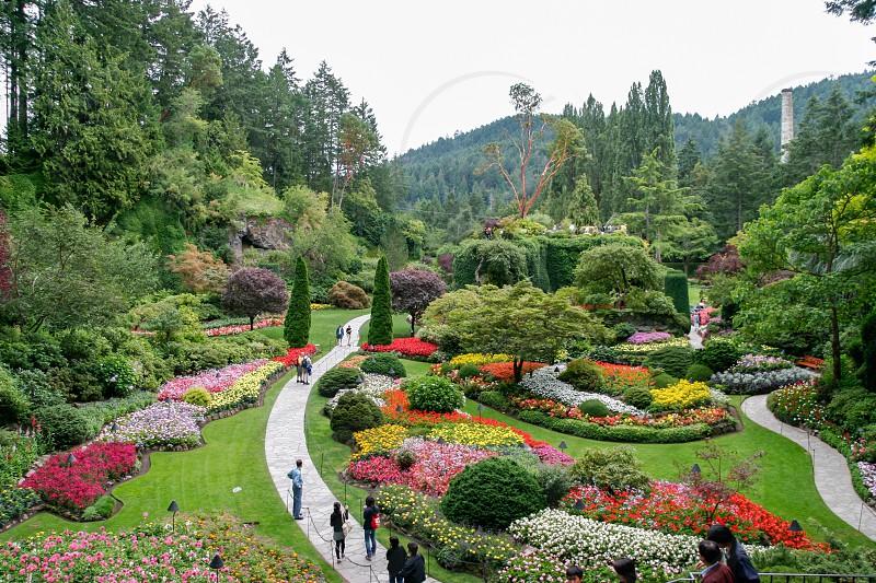 Butchart Gardens in Brentwwod Bay Vancouver Island photo