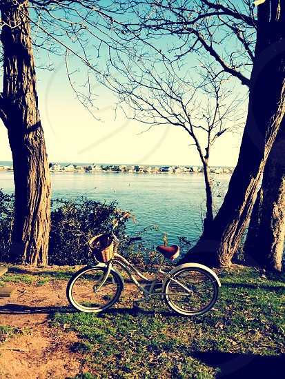 white beach cruiser parked in front of body of water in the middle of two trees photo