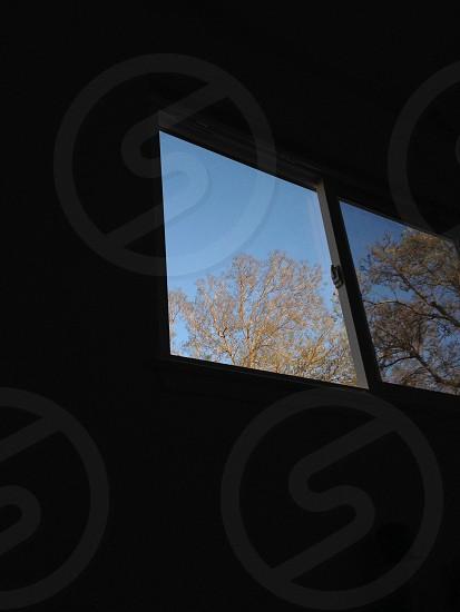 Window to freedom photo