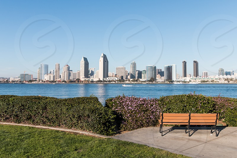 The Downtown San Diego Skyline With Centennial Park In Coronado California In The Foreground By Sherry V Smith Photo Stock Snapwire