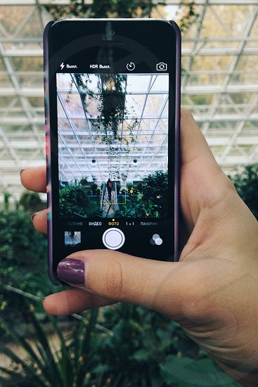 woman with purple manicure taking a picture of a person standing in the middle of a green house using a black iphone 5 photo