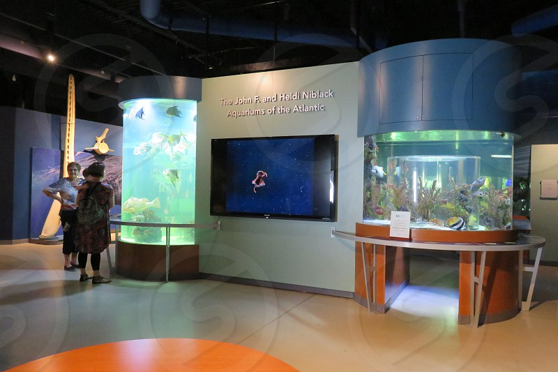 South Florida Science Center and Aquarium photo