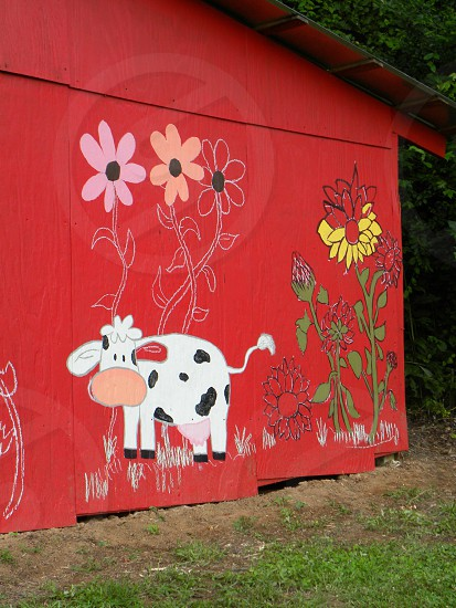 Old barn painted red then added flowers & cow photo