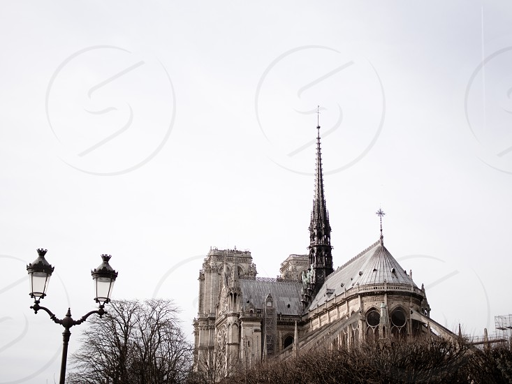 River banks and monuments of paris photo