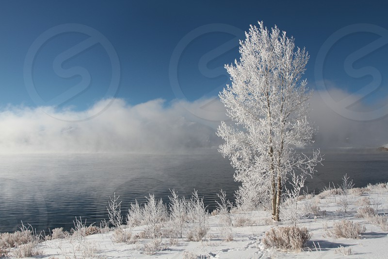 A very cold icy december morning by the lake. photo