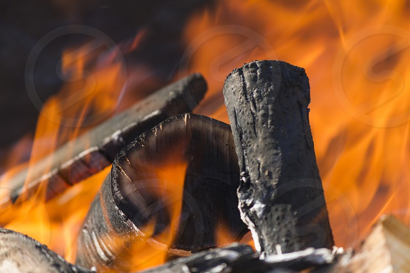 flame and fire in the wood photo