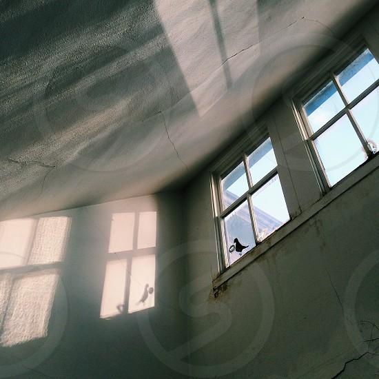 grey concrete wall with glass windows photo