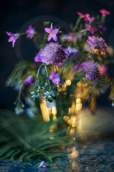 Bouquet of forest flowers in soft focus photo