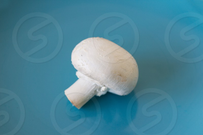 Champignon mushrooms on table white background photo