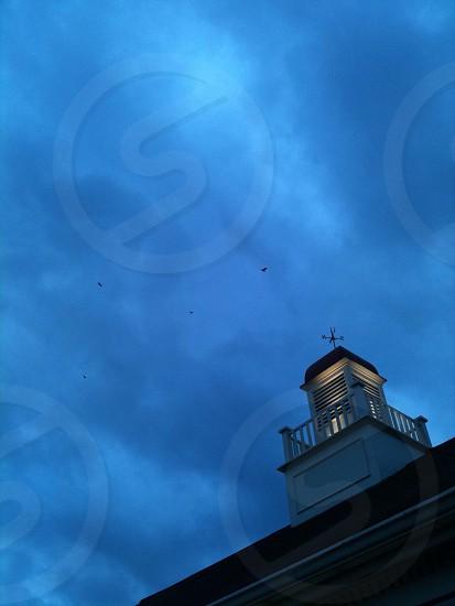 Night sky Birds Cupola Weathervane photo