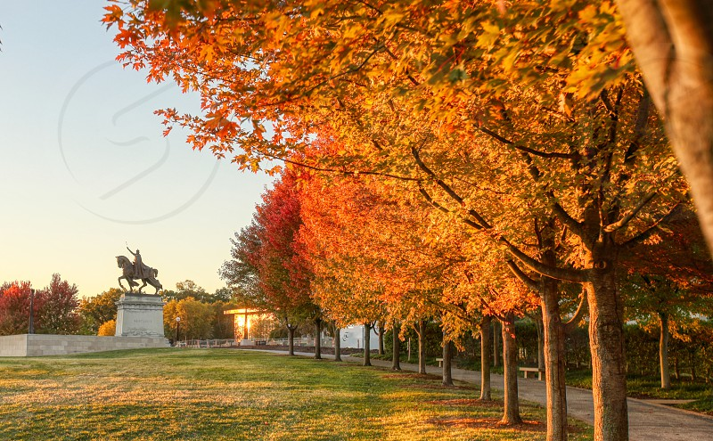 October 20 2018 - St. Louis Missouri - The sunrise and fall foliage around the Apotheosis of St. Louis statue of King Louis IX of France on Art Hill in Forest Park St. Louis Missouri. photo