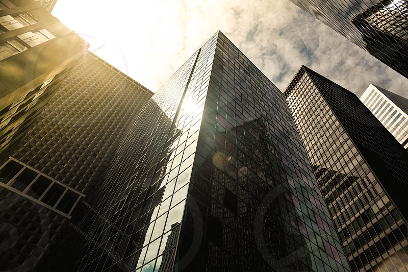 gray glass city buildings photo
