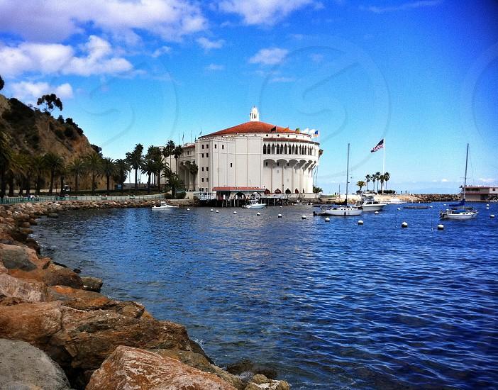 Catalina Island harbor and Casino photo
