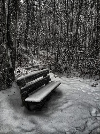 brown wooden bench with snow photo
