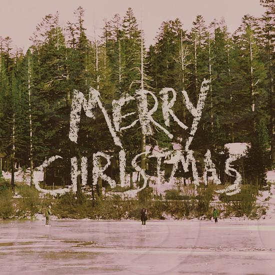 merry christmas greeting  photo