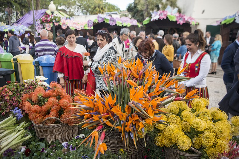 the flower market and market street at the avenida Arriaga at the Festa da Flor or Spring Flower Festival in the city of Funchal on the Island of Madeira in the Atlantic Ocean of Portugal.  Madeira Funchal April 2018 photo