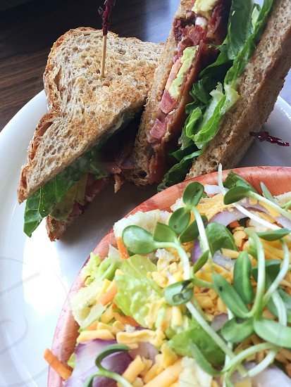 two brown diagonally sliced ham and cheese sandwich near brow round bowl with beansprout vegetable salad     on white ceramic plate on brown wooden surface photo