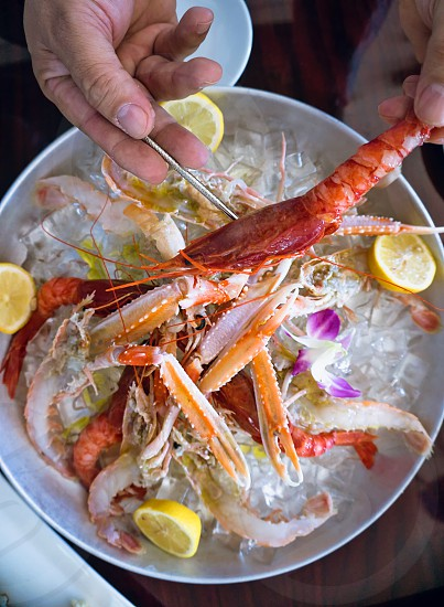 person pealing shrimp above white ceramic bowl full of ice cubes and shrimp meat photo