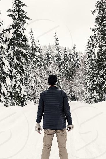 Rear view of man gazing into a winter wonderland forest scene. photo