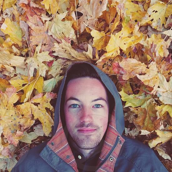 brunet blue-eyed man wearing gray hooded zip jacket lying against yellow maple leaves photo