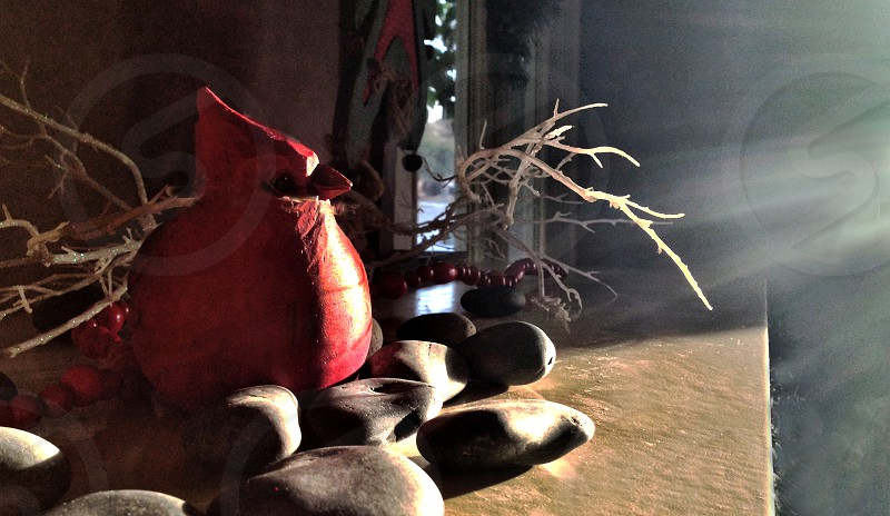 holiday still life on a fireplace mantle with red cardinal bird and river rocks photo