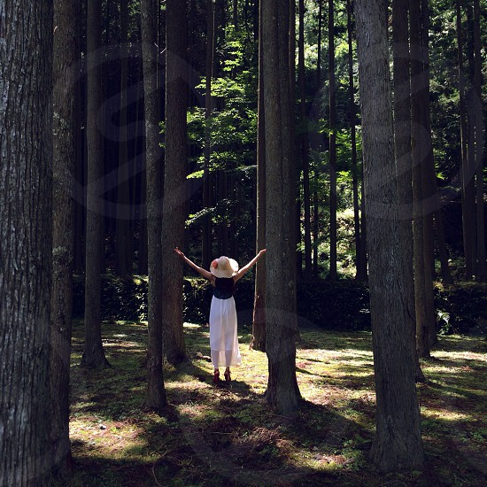woman in white and black dress with brown hat spreading her hands under the brown tall trees photo