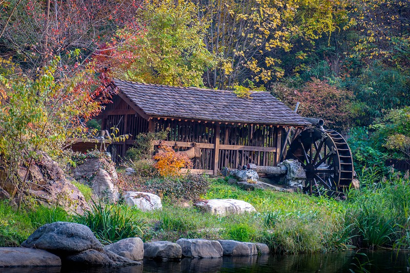 An old mill with a water wheel on the edge of a creek in the fall with autumn colors in full display all around. photo