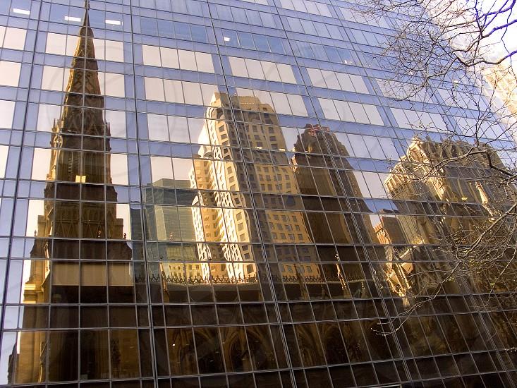 N.Y. photo