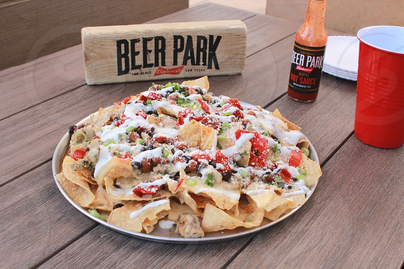 beer park tacos on white ceramic plate photo