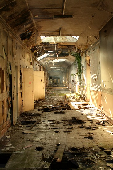 Wittingham mental asylum  photo