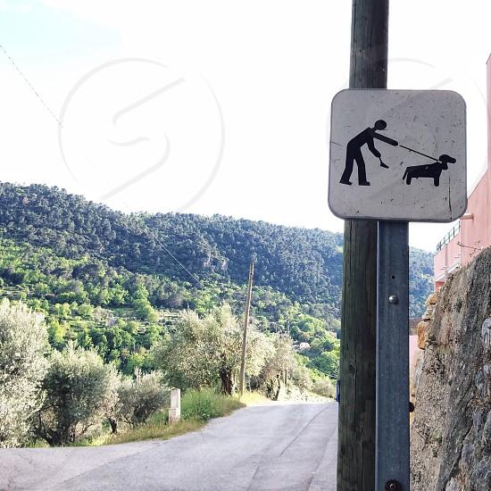 no pet's allowed signage photo
