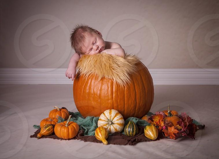Pumpkin pumpkin patch little boy photo