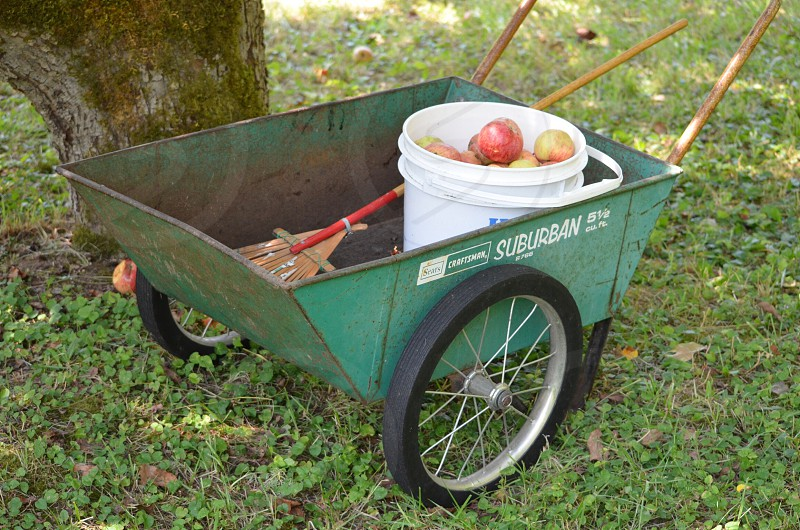 Apple picking wheelbarrow apple picking farm fresh photo
