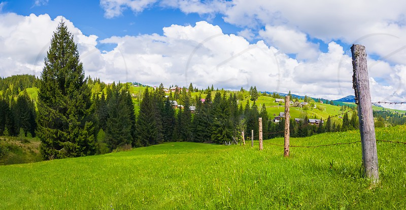 Typical Carpathians village landscape. Old fence made of wood pillars and barbed metallic wire across the farm on the green hills surrounded by coniferous forests in a sunny spring day. photo